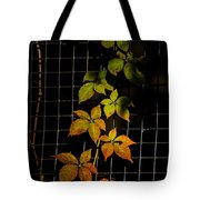Colors Change Tote Bag
