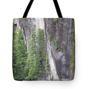 Colors Of Alaska - More From Misty Fjords Tote Bag