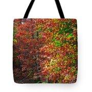 Colors Of Fall 4 Tote Bag