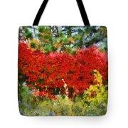 Colors Of Life Tote Bag