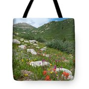 Colors Of The Rainbow - Colorado Mountain Summer Tote Bag