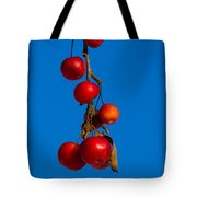 Colors Of Winter - Featured 3 Tote Bag