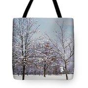Colors Of Winter Tote Bag
