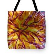 Colour Convolution Tote Bag