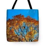 Colourful Autumn Tree Against Blue Sky Tote Bag