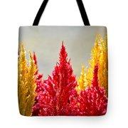 Colourful Plants Tote Bag