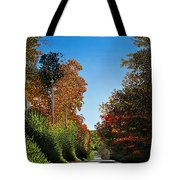 Colours Of Caledon Tote Bag
