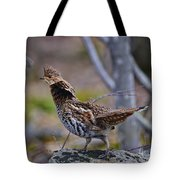 Coltsfoot Ruffed Grouse Tote Bag