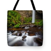 Columbia Gorge Richness Tote Bag