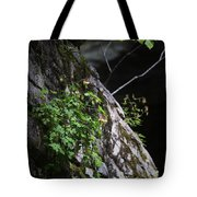 Columbine Flowers On River Rock Tote Bag