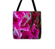 Columns Of Colour Tote Bag