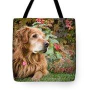 Comanche Autumn - Golden Retriever - Casper Wyoming Tote Bag