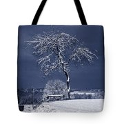 Come Dance With Me Tote Bag