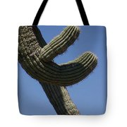 Come Hither Tote Bag