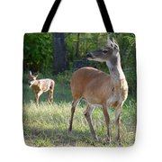 Come On My Babe Tote Bag