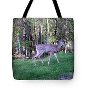 Come On Lets Play Tote Bag