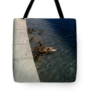 Come On Over Here  Tote Bag