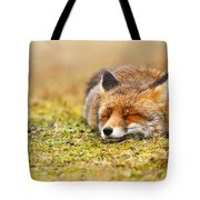 Comfortably Fox Tote Bag