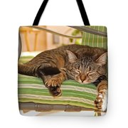 Comfy Kitty Tote Bag