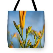 Coming Attractions Tote Bag