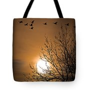 Coming Home In The Spring Tote Bag by Bob Orsillo