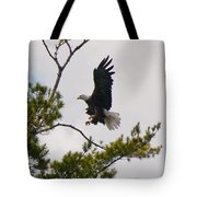 Coming In For A Landing Tote Bag