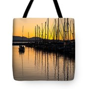 Coming In Tote Bag by Mike Reid