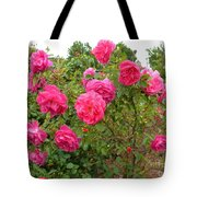 Coming Up Rosy Tote Bag
