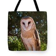 Common Barn Owl 1 Tote Bag