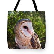 Common Barn Owl 10 Tote Bag