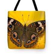Common Buckeye Butterfly Tote Bag