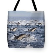 Common Dolphins Surfacing San Diego Tote Bag by Richard Herrmann
