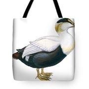 Common Eider Tote Bag