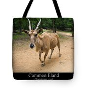 Common Eland Tote Bag by Chris Flees