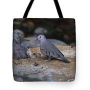 Common Ground-dove Tote Bag