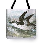Common Guillemot Tote Bag