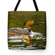 Common Loon Pictures 145 Tote Bag