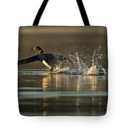 Common Loon Pictures 152 Tote Bag
