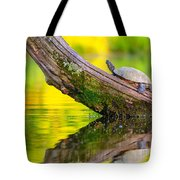 Common Map Turtle Tote Bag