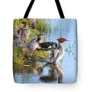 Common Merganser Family 2a Tote Bag