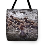 Common Merganser With Chicks Tote Bag