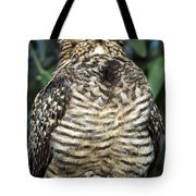 Common Nighthawk Napping Tote Bag