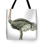 Common Ostrich Tote Bag