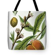 Common Peace Persica Vulgaris Tote Bag