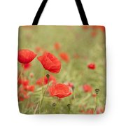 Common Poppies Tote Bag