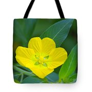 Common Primrose Willow 1 Tote Bag