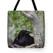 Common Raven Incubating Eggs In Nest Tote Bag