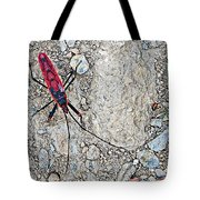 Common Red Bug Along The Seti River Road-nepal  Tote Bag