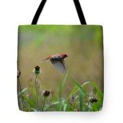 Common Redpoll In Flight Tote Bag