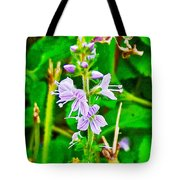 Common Speedwell On Skyline Trail In Cape Breton Highlands National Park-nova Scotia  Tote Bag